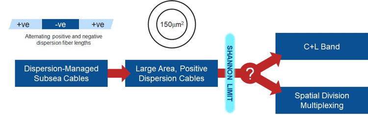 Capacity options in subsea cable systems