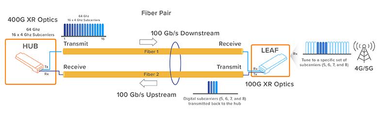 PON Network XR