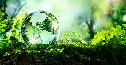 Crystal globe on green ground