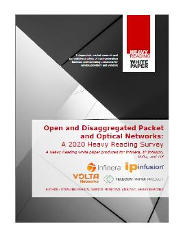 Open and disaggregated packet and optical networks