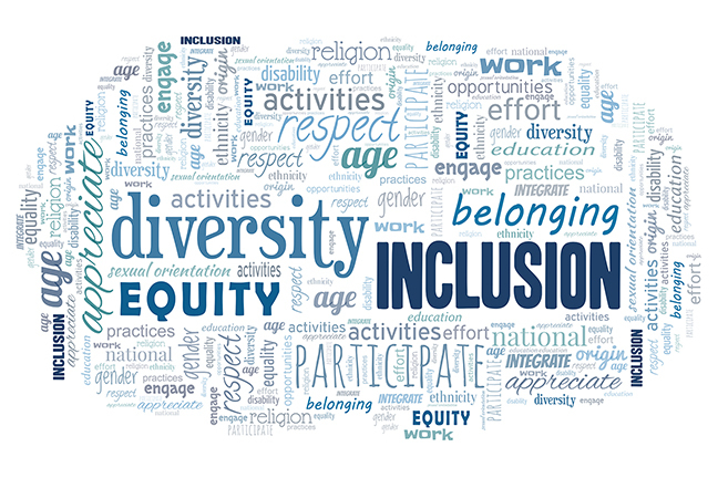 Diversity Equity and Inclusion image